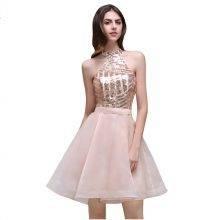 Halter Dress Backless  Formal Party Knee Length Cocktail Dress